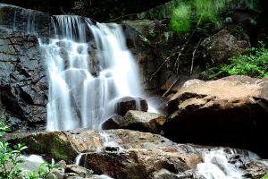 Thap-Lan-National-Park-Prachinburi-Thailand-01.jpg
