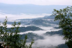 Thap-Lan-National-Park-Prachinburi-Thailand-02.jpg