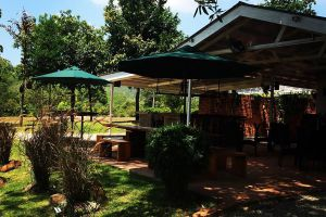 The-Fat-Frog-Restaurant-Langkawi-Kedah-Malaysia-01.jpg