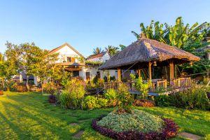 The-Field-Restaurant-Bar-Hoi-An-Vietnam-004.jpg