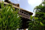 Thipwimarn-Resort-Koh-Tao-Suratthani-Thailand-Garden.jpg