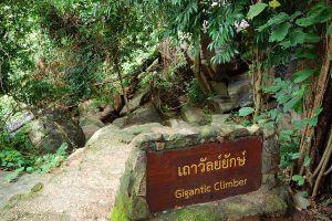 Thung-Na-Muang-Waterfall-Ubon-Ratchathani-Thailand-06.jpg