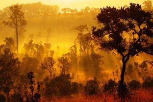 Thung-Salaeng-Luang-National-Park-Petchaboon-Thailand-001.jpg