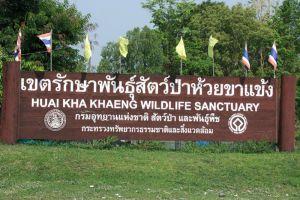 Thung-Yai-Naresuan-Huai-Kha-Khaeng-Wildlife-Sanctuary-Uthaithani-Thailand-004.jpg