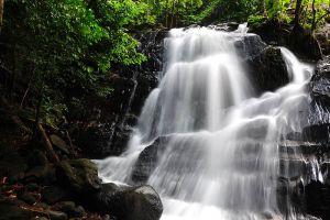 Ton-Nga-Chang-Wildlife-Sanctuary-Songkhla-Thailand-004.jpg
