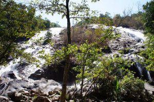 Ton-Nga-Chang-Wildlife-Sanctuary-Songkhla-Thailand-005.jpg