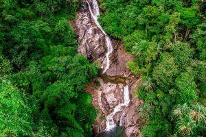 Ton-Pariwat-Wildlife-Sanctuary-Phang-Nga-Thailand-03.jpg
