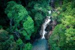 Ton-Pariwat-Wildlife-Sanctuary-Phang-Nga-Thailand-04.jpg