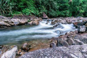 Ton-Pariwat-Wildlife-Sanctuary-Phang-Nga-Thailand-06.jpg