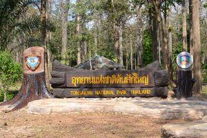 Ton-Sak-Yai-National-Park-Klong-Tron-Uttaradit-Thailand-01.jpg