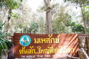 Ton-Sak-Yai-National-Park-Klong-Tron-Uttaradit-Thailand-02.jpg