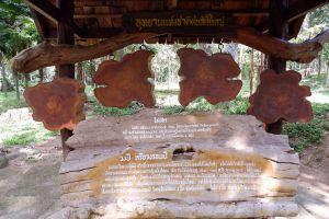 Ton-Sak-Yai-National-Park-Klong-Tron-Uttaradit-Thailand-04.jpg