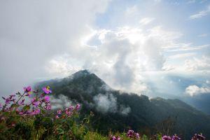 Ton-Sak-Yai-National-Park-Klong-Tron-Uttaradit-Thailand-06.jpg