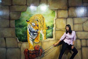 Trickeye-Museum-Phuket-Thailand-07.jpg