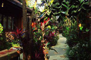 Tropical-Villa-Samui-Thailand-Garden.jpg