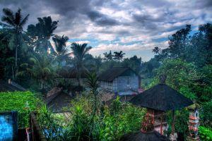 Ubud-Bali-Indonesia-001.jpg