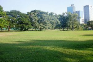Vachirabenjatas-Park-Bangkok-Thailand-04.jpg