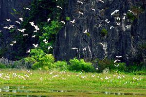 Van-Long-Natural-Reserve-Ninh-Binh-Vietnam-002.jpg