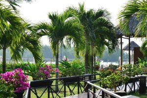 Victoria-Resort-Can-Tho-Vietnam-Garden.jpg