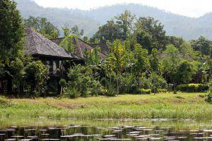 Villa-Inle-Resort-Spa-Taunggyi-Myanmar-Pond.jpg