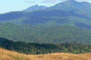 Virachey-National-Park-Ratanakiri-Cambodia-005.jpg