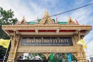 Wat-Pa-Lelai-Worawihan-Suphan-Buri-Thailand-04.jpg