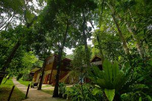 Wat-Pa-Tam-Wua-Forest-Monastery-Mae-Hong-Son-Thailand-04.jpg