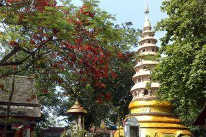 Wat-Ram-Poeng-Tapotaram-Chiang-Mai-Thailand-02.jpg