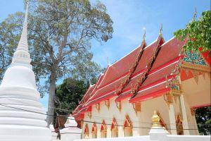 Wat-Sao-Thong-Thong-Lopburi-Thailand-002.jpg