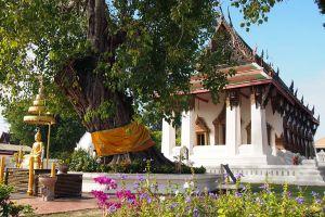 Wat-Suwandararam-Ratchaworawihan-Ayutthaya-Thailand-05.jpg