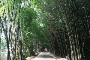 Wat-Tham-Saeng-Phet-Amnat-Charoen-Thailand-03.jpg