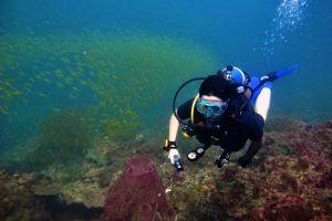 World-Dive-Center-Phi-Phi-Krabi-Thailand-001.jpg